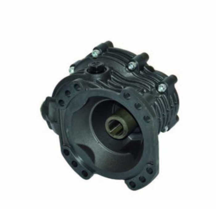 Accesorio Bertolini pumps 321052973