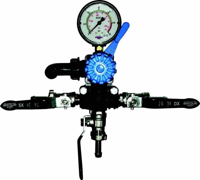 Regulador Bertolini pumps 244028973